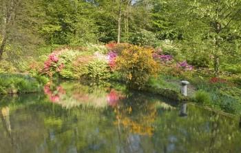 Lukesland Reflections Landscape