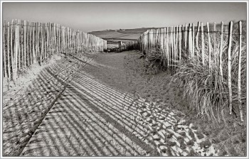 Fencing Shadows