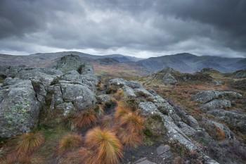 22-10-19-Watendlath-Mountain-Walk---Mountain-Grass-IMG_4212
